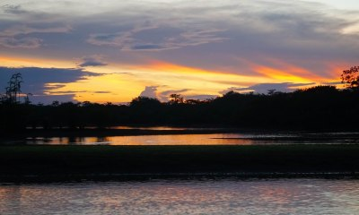 60 sunset sm