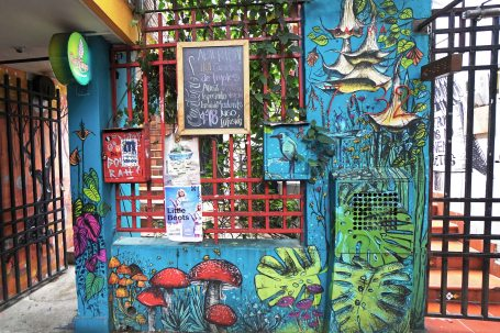 20 street art veg res sm