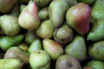 35 fruit pears sm